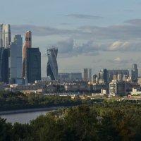 Сити :: Дмитрий Вдовин