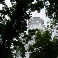 Ц. Усекновения главы Иоанна Предтечи в Дьякове :: Анна Воробьева