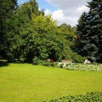 В старом парке. :: Жанна Мааита