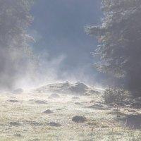 Лёгкое дыхание Земли :: Светлана Попова