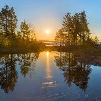 Утреннее солнце :: Фёдор. Лашков