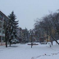 Зима   в   Ивано - Франковске :: Андрей  Васильевич Коляскин