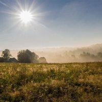 Солнечное утро :: Виктор