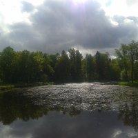 Переменная облачность :: Сапсан