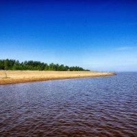 Питер берег пляжа Большая Ижора :: Юрий Плеханов