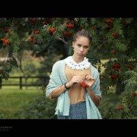 Рябины красной горький вкус... :: Анна Корсакова