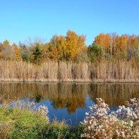 Осень. Отражение. :: Мария Ларионова
