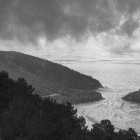 Утро туманное. :: Эльвира Лопатина