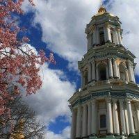 Киев :: Ylia Verevskaya
