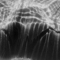 Свет и тьма :: Tanja Gerster