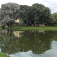 Остров в Юсуповском саду :: Фотогруппа Весна.