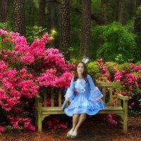 В сказочном лесу... :: Ксения