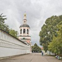 Вид на Данилов монастырь :: Олег