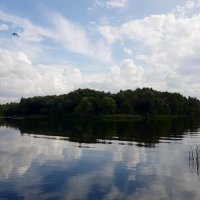 Облака, как птицы, над землей летели... :: Ольга Русанова (olg-rusanowa2010)