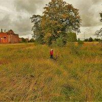 Проезжая Аракчеевские казармы в  Селище... :: Sergey Gordoff
