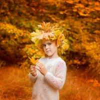 краски осени :: Мария Березина
