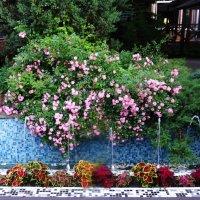 """Цветочный интерьер в летнем ресторане """"Фруктовый сад"""" :: татьяна"""