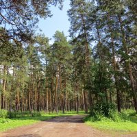 Территория базы отдыха :: Вера Щукина