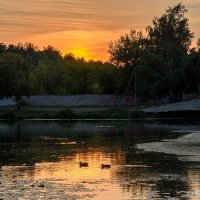 Закат с утками :: Сергей