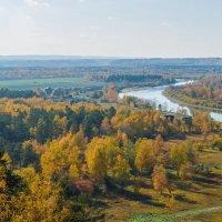 Осень на Иркуте :: Владимир Гришин