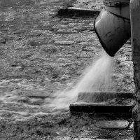 Дождик :: Александр