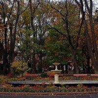 осень в Городском саду :: Александр Корчемный