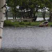 Деревенские мотивы :: Дмитрий Солоненко