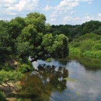 Река Дубна близ Вотри :: Grey Bishop