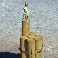 Памятник зайцу на Заячьем острове :: Сергей Карачин