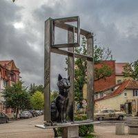 Сидит кошка на окошке. :: Сергей Половников