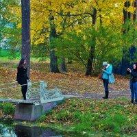 Девушки и осень... :: Sergey Gordoff