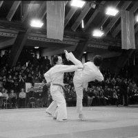 Чемпионат СССР по спортивному каратэ . Таллин 1982 :: Игорь Смолин