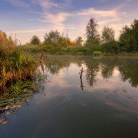 Киржачская осень... :: Roman Lunin