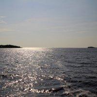 Исток реки Волхов из озера Ильмень. :: tatiana
