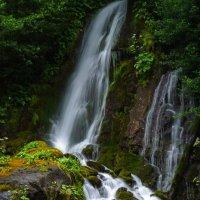 Водопад на озере Рица, Абхазия :: Юрий Захаров
