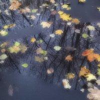 Про осень :: Tanja Gerster