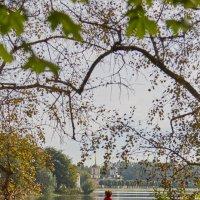 Осень в усадьбе :: Лариса Фёдорова