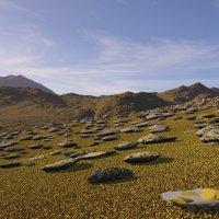 каменная планета :: linnud