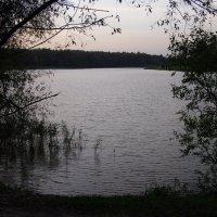 Осенний вечер :: Анна Воробьева