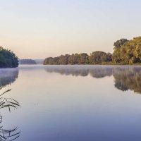 Красоты утренней реки.. :: Юрий Стародубцев
