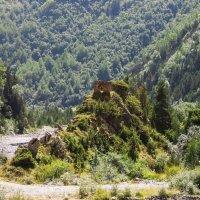 Старая башня :: Михаил Пшеннов