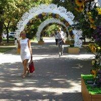 Новое украшение бульвара :: Татьяна Смоляниченко