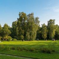 Прогулки по Батаническому саду. :: Николай