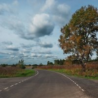 Осенняя автострада :: Александр