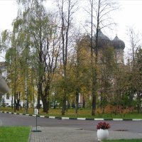 вид на Покровский собор :: Анна Воробьева