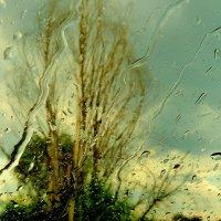 дождь в походе :: Александр Прокудин