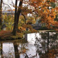 Осенняя картина. Парк в Царском селе :: Наталья