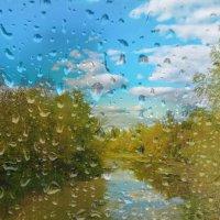 Золотая осень :: Анастасия сосновская