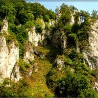 Йоцовский парк в Кракове :: Galina Belugina