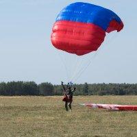 Удачное приземлние :: Игорь Чичиль